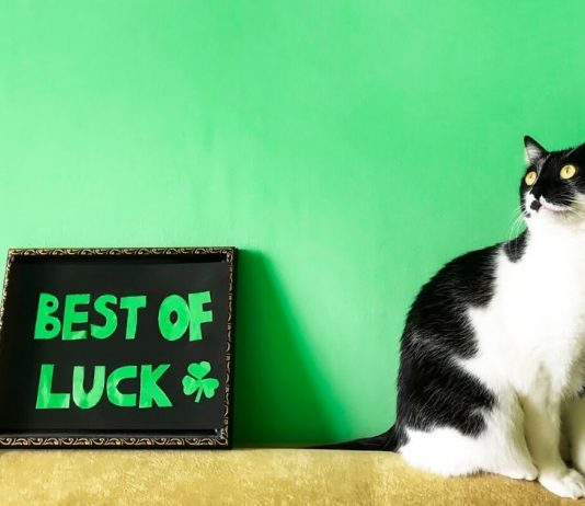Good Luck Wishes Messages