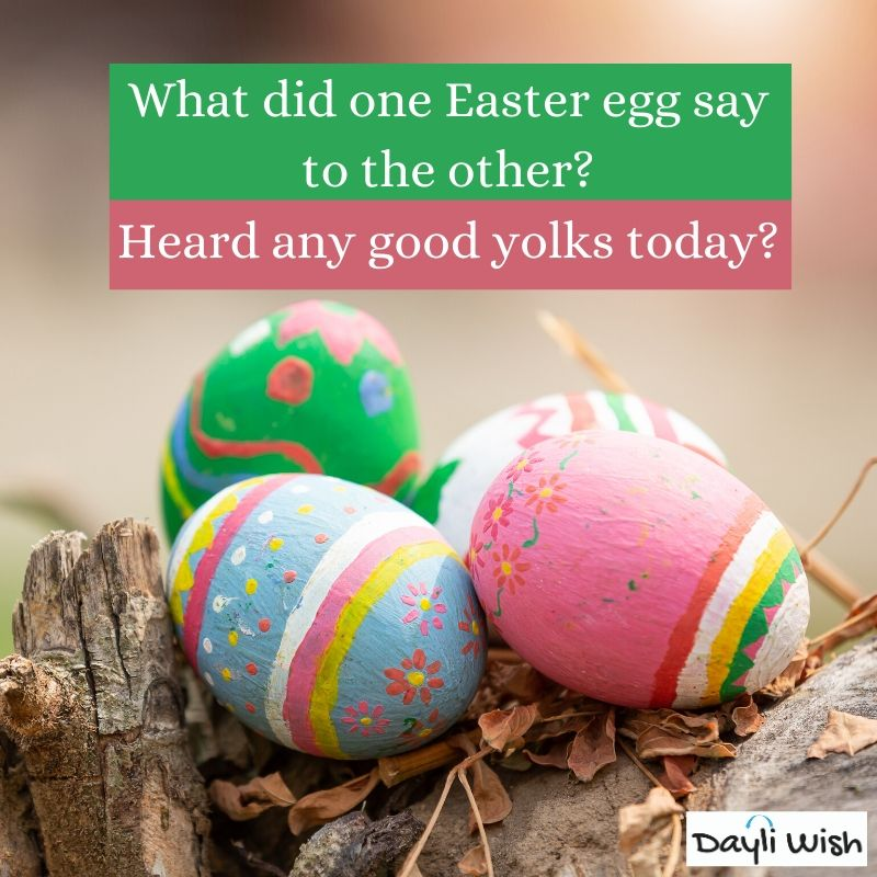 Funny Easter Eggs Jokes