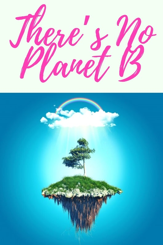 there is no planet b slogan Image Earth Day 2020